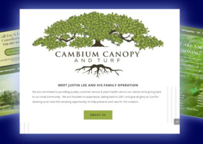 Cambium Canopy